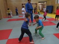 2014 - FDS - Judo