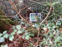 2014 - Fortbildung im Wald